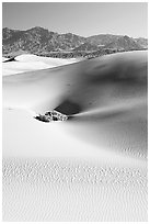Depression in sand dunes, morning. Death Valley National Park ( black and white)