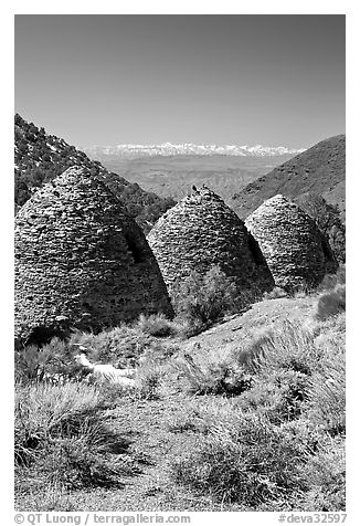Wildrose Charcoal kilns with Sierra Nevada in background. Death Valley National Park (black and white)