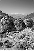 Wildrose Charcoal kilns with Sierra Nevada in background. Death Valley National Park, California, USA. (black and white)