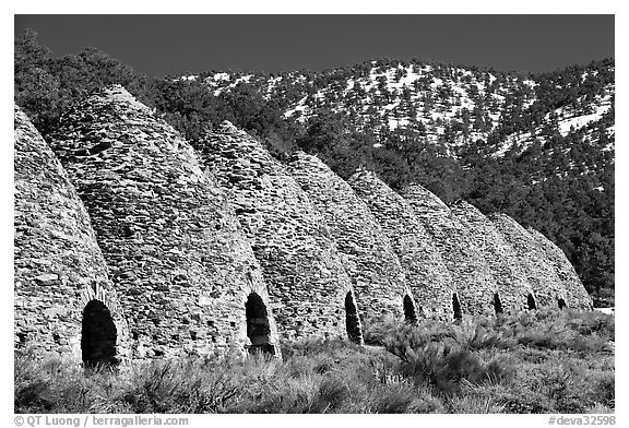 Wildrose charcoal kilns in the Panamint Range. Death Valley National Park (black and white)