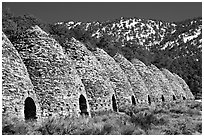 Wildrose charcoal kilns in the Panamint Range. Death Valley National Park, California, USA. (black and white)