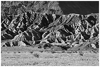 Yellow wildflowers and buttes, late afternoon. Death Valley National Park, California, USA. (black and white)