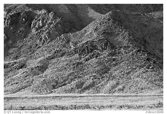 Desert Gold and mountains, late afternoon. Death Valley National Park (black and white)