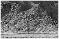 Desert Gold and mountains, late afternoon. Death Valley National Park, California, USA. (black and white)