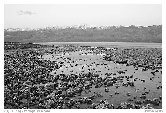 Pond and salt formations, Badwater, dawn. Death Valley National Park (black and white)