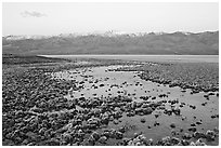 Pond and salt formations, Badwater, dawn. Death Valley National Park, California, USA. (black and white)