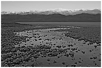 Salt pool and sunrise over the Panamints. Death Valley National Park, California, USA. (black and white)