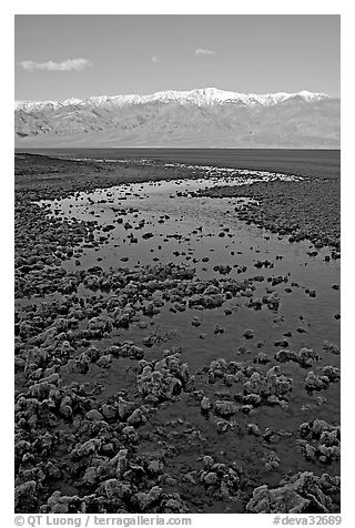Salt pool and Panamint range, early morning. Death Valley National Park (black and white)