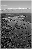 Salt pool and Panamint range, early morning. Death Valley National Park, California, USA. (black and white)
