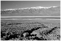 Valley with seasonal lake in the distance and Panamint Range, morning. Death Valley National Park, California, USA. (black and white)