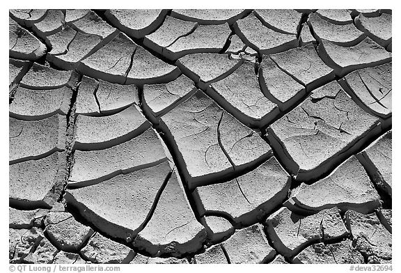 Mud cracks. Death Valley National Park (black and white)