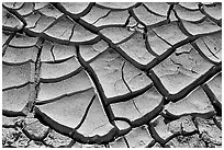 Mud cracks. Death Valley National Park, California, USA. (black and white)