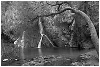 Desert Oasis with Darwin Falls. Death Valley National Park ( black and white)