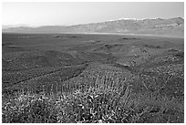 Panamint Valley and Panamint Range, dusk. Death Valley National Park, California, USA. (black and white)
