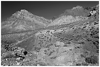 Slopes above Titus Canyon. Death Valley National Park, California, USA. (black and white)