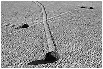 Intersecting travel grooves of sliding stones, the Racetrack. Death Valley National Park, California, USA. (black and white)