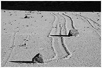 Gliding stones, the Racetrack playa. Death Valley National Park ( black and white)