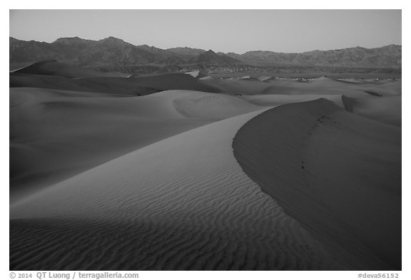 Dusk over the Mesquite Sand dunes. Death Valley National Park (black and white)