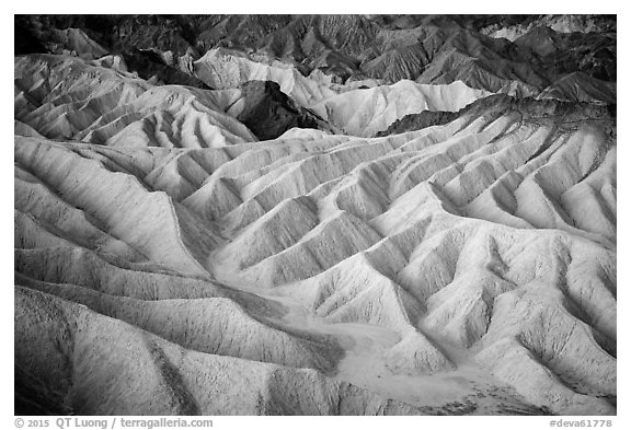 Eroded badlands at dawn, Zabriskie Point. Death Valley National Park (black and white)