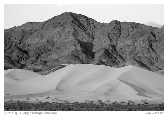 Ibex Dunes and Saddle Peak Hills at sunset. Death Valley National Park (black and white)