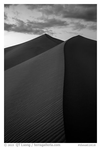 Dune ridges at sunset, Ibex Dunes. Death Valley National Park (black and white)