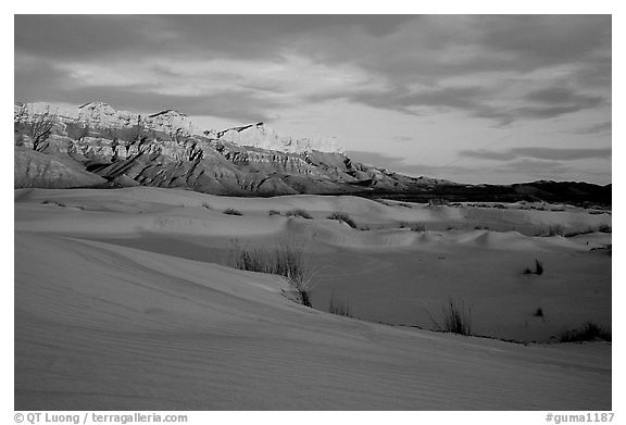 Salt Basin dunes and Guadalupe range at sunset. Guadalupe Mountains National Park (black and white)