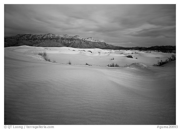 Gypsum dune field and last light on Guadalupe range. Guadalupe Mountains National Park (black and white)