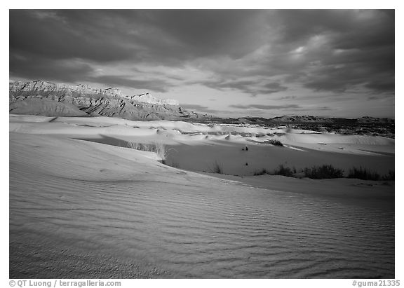Red light of sunset on white sand dunes and Guadalupe range. Guadalupe Mountains National Park (black and white)