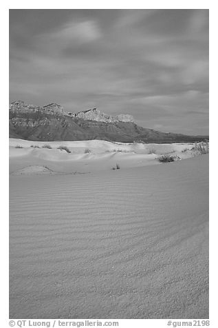 Gypsum sand dunes and Guadalupe range at sunset. Guadalupe Mountains National Park (black and white)