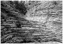 Hiker's Staircase, Pine Spring Canyon. Guadalupe Mountains National Park, Texas, USA. (black and white)