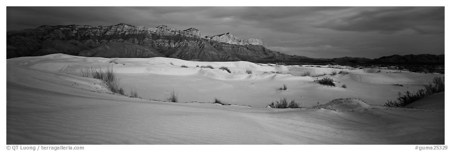 Salt Basin gypsum dunes and Guadalupe range. Guadalupe Mountains National Park (black and white)