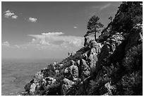 Slopes with trees and rocks high above plain. Guadalupe Mountains National Park, Texas, USA. (black and white)