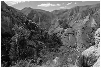 Pine Spring Canyon from above. Guadalupe Mountains National Park ( black and white)
