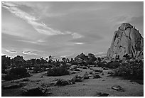 Landscape with climbers at sunset. Joshua Tree National Park, California, USA. (black and white)