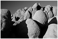 Jumbo rocks, sunset. Joshua Tree National Park, California, USA. (black and white)