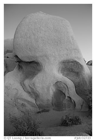 Skull rock at dusk. Joshua Tree National Park (black and white)