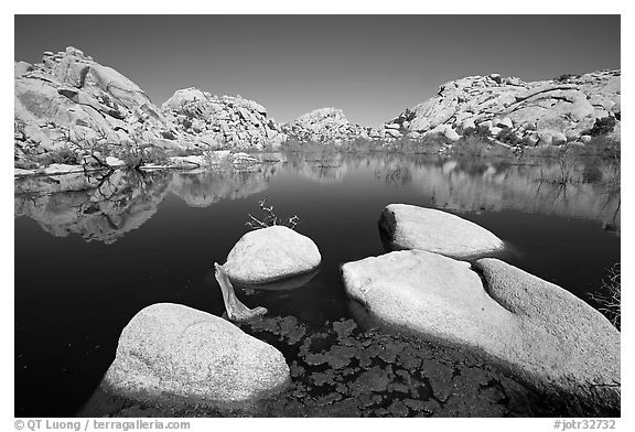 Barker Dam reservoir, mid-day. Joshua Tree National Park (black and white)