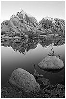Rockpile and refections, Barker Dam, sunrise. Joshua Tree National Park, California, USA. (black and white)