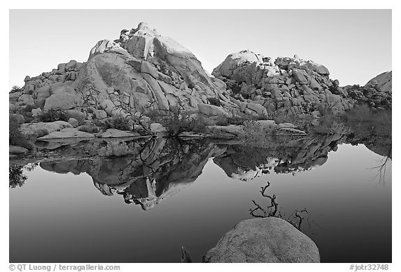 Rocks reflected in reservoir, Barker Dam, sunrise. Joshua Tree National Park (black and white)