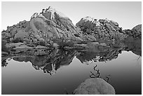 Rocks reflected in reservoir, Barker Dam, sunrise. Joshua Tree National Park, California, USA. (black and white)