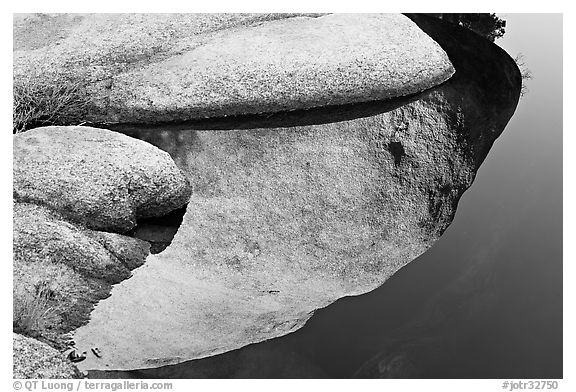 Rocks and reflections, Barker Dam. Joshua Tree National Park (black and white)