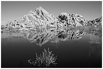 Rock formations reflected in Barker Dam Pond, morning. Joshua Tree National Park, California, USA. (black and white)