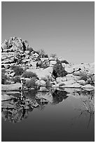 Photographer at Barker Dam. Joshua Tree National Park, California, USA. (black and white)
