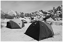 Tents, Hidden Valley Campground. Joshua Tree National Park, California, USA. (black and white)