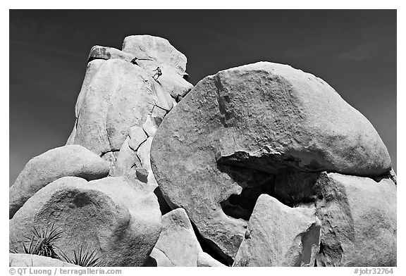 Rocks with climbers in a distance. Joshua Tree National Park (black and white)