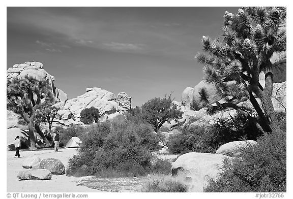 Campers, Hidden Valley Campground. Joshua Tree National Park (black and white)