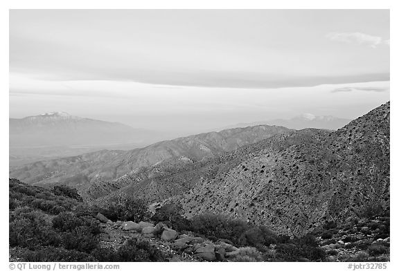 Keys View, sunrise. Joshua Tree National Park (black and white)