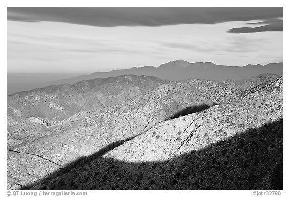 Ridges from Keys View, early morning. Joshua Tree National Park (black and white)