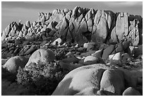 Rock wall with marble rocks at sunset, Jumbo Rocks. Joshua Tree National Park ( black and white)