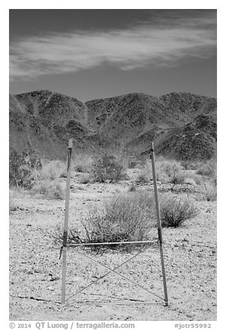 Signage and Pinto Mountains. Joshua Tree National Park (black and white)